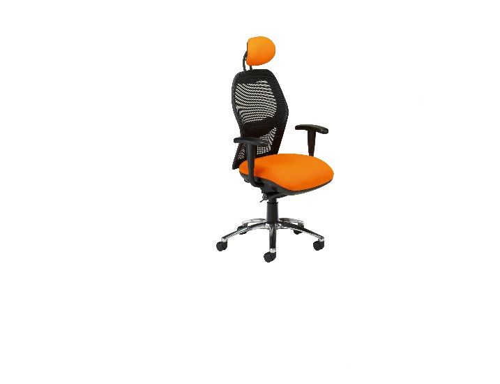 Eeso Meshed Back Swivel Chair Adj Headrest Es62adj
